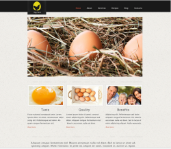 Voorbeeld layout